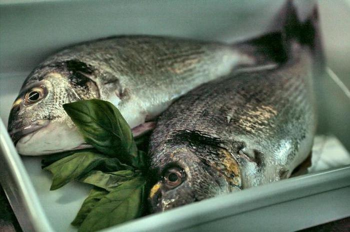 Готовим рыбу: как правильно выбирать и разделывать