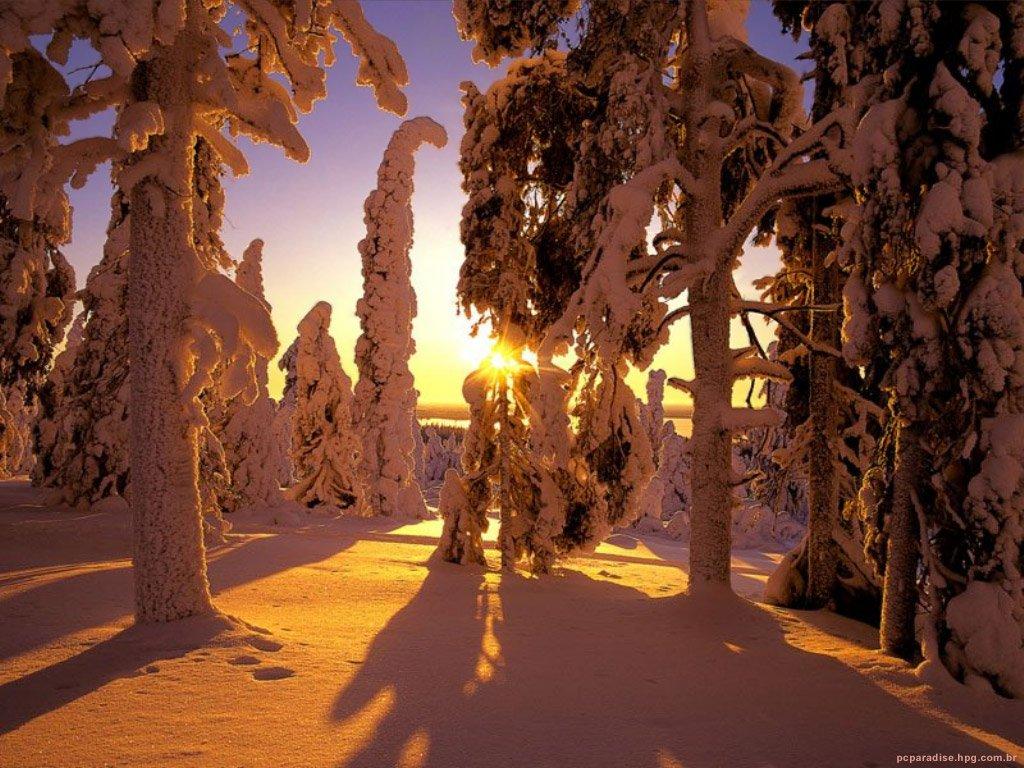 Какая она, Финляндия, страна Муми-троллей?