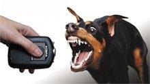 Отпугиватели собак и другие технологичные диковинки