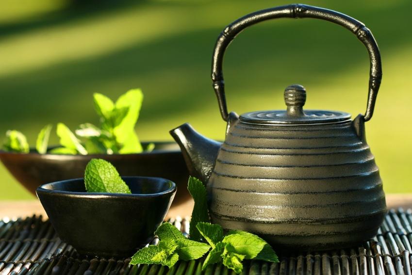 Основные правила выбора качественного чая?