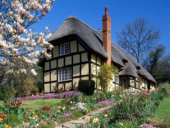 Проблемы с загородной недвижимостью — о чём следует знать покупателю