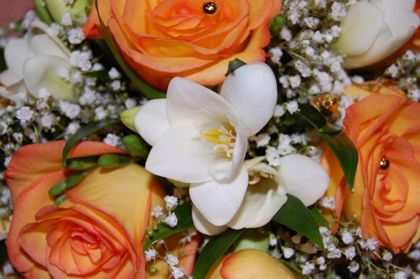 Оформление цветами и цветы в нашей жизни