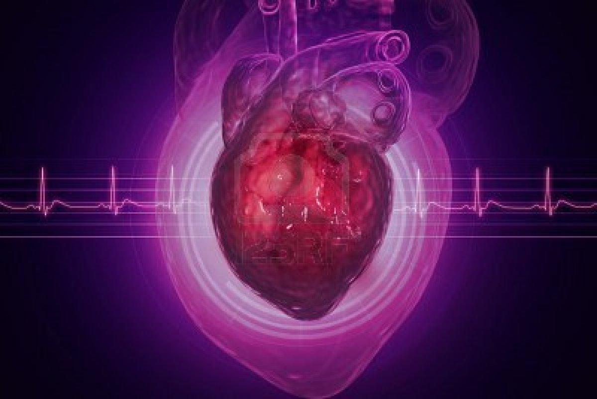 Как питаться, чтобы сердце не «шалило»?