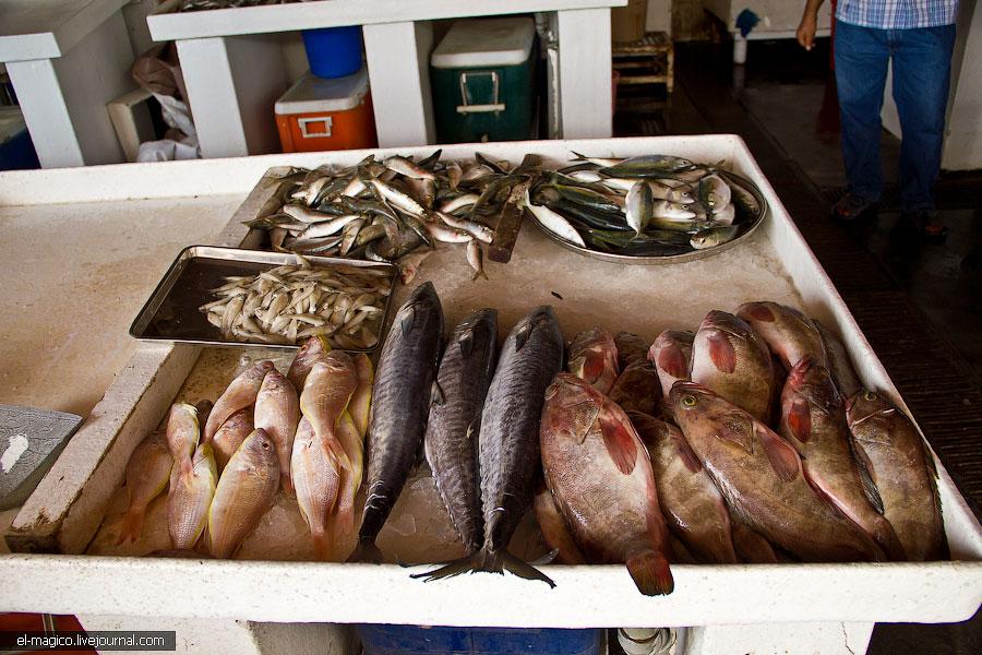 Как устранить рыбный запах?