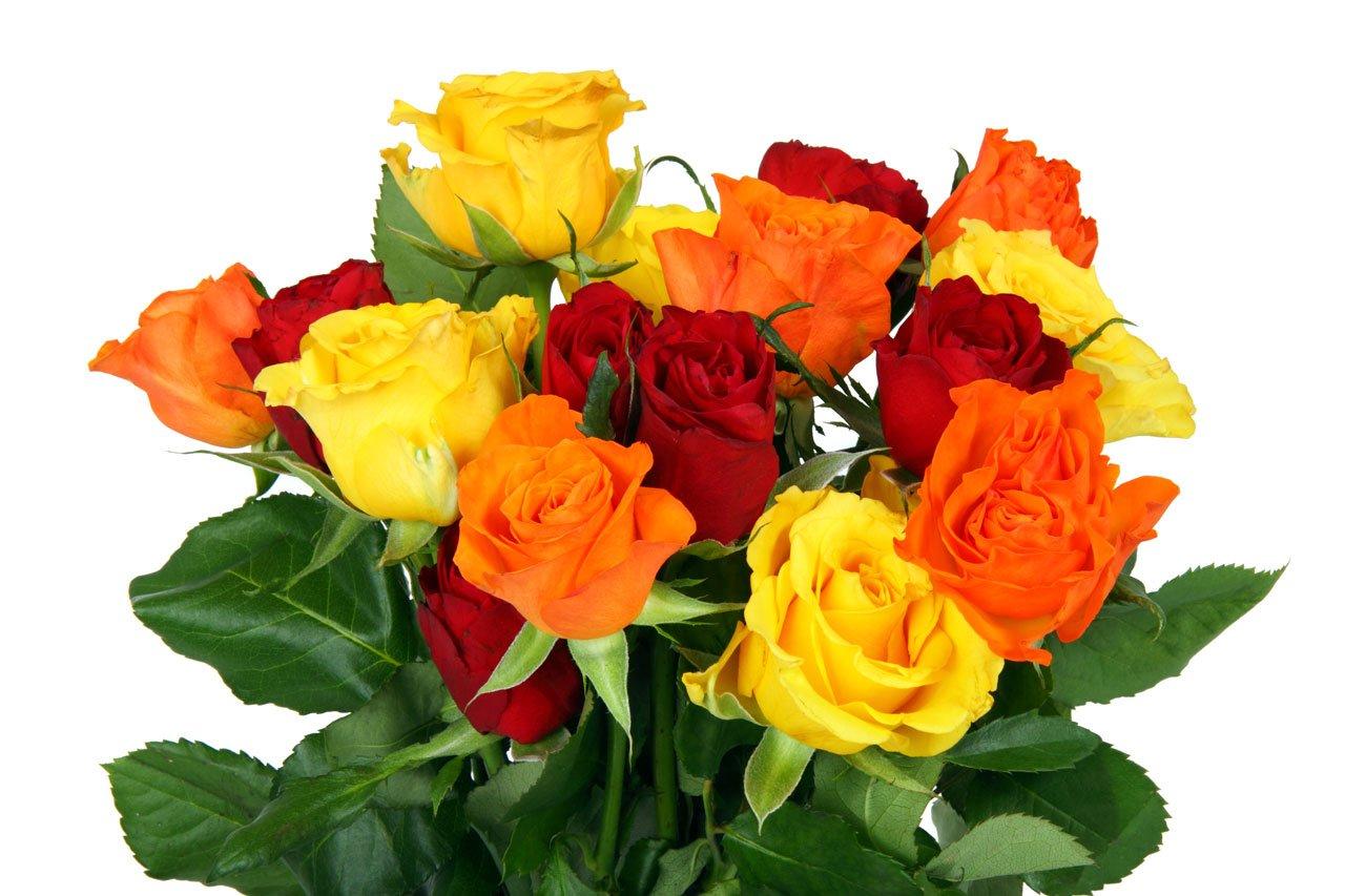 Какие цветы следует дарить женщинам разного возраста
