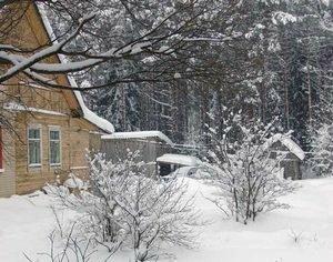 Полезный снег для вашего огорода