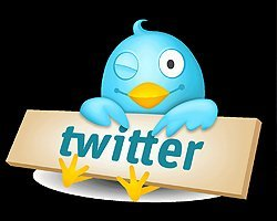 Новая программа от соцсети Twitter