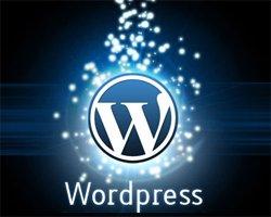 Что надо знать о движке WordPress
