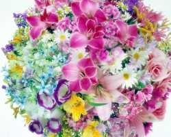 Где купить ранункулюс? Конечно же в салоне цветов Flork.ru!