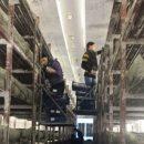 В Лаишеве создаются рабочие места. Грибное царство