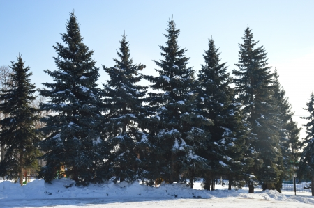 Оперативный прогноз МЧС по РТ: ожидается снег