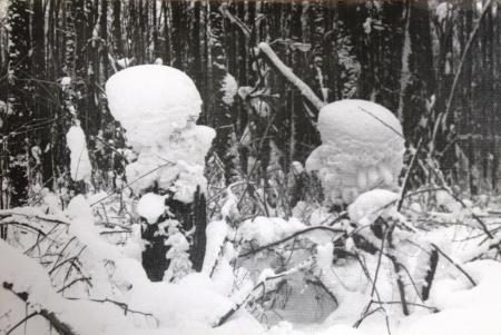 Фото дня: грузин и снегурочка