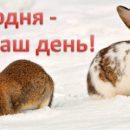 Необычные праздники 20 марта