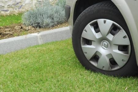 В Лаишеве будут штрафовать за парковку в зеленых зонах