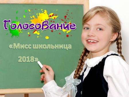 Меньше трех часов осталось до конца финального голосования в конкурсе «Мисс школьница 2018»