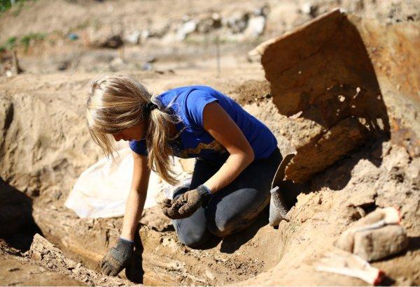 Ученые из Саратова нашли кости доисторических животных