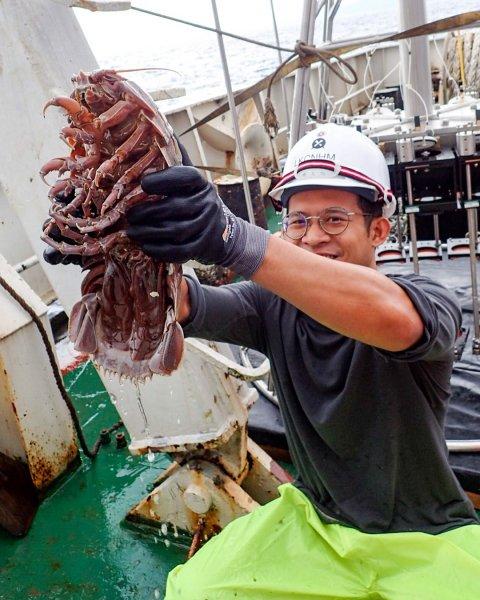 Ученые нашли глубоководного морского таракана, и назвали его Дарт Вейдер