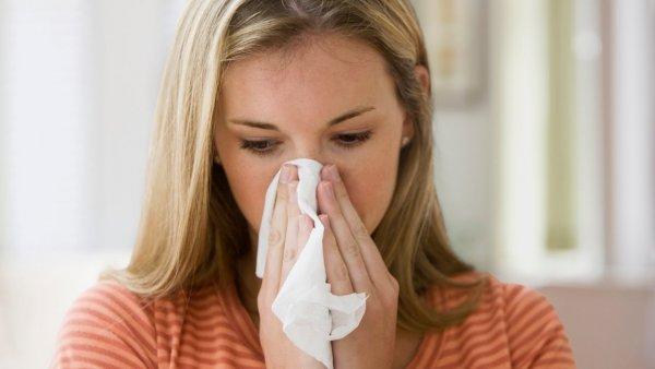 Учёные из США рассказали о разнице аллергии в помещении и на улице