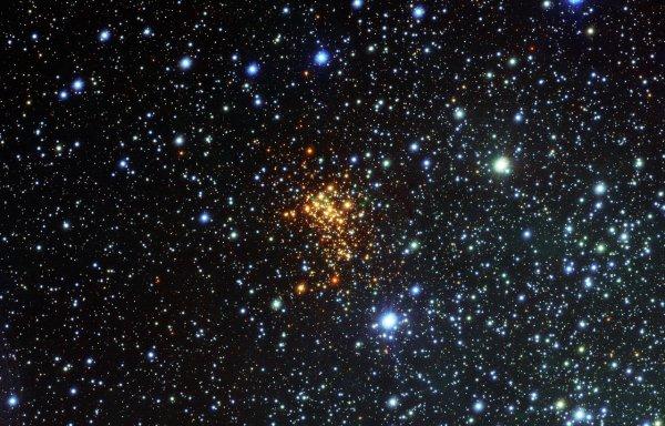 Учёные поведали, сколько «мёртвых звёзд» находится вокруг Солнца