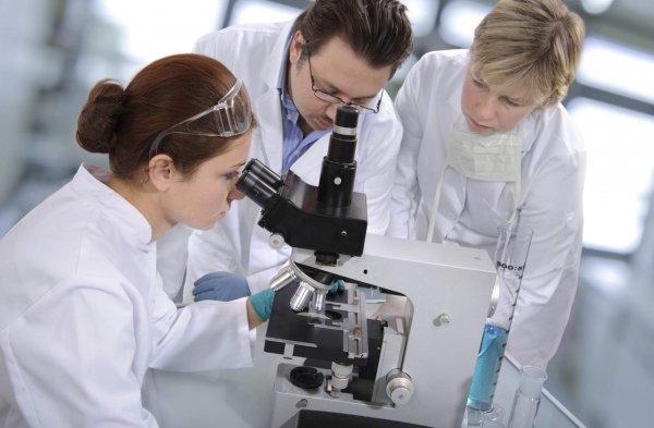 Физики из Украины и России нашли необычные магнитные свойства гексаборида самария