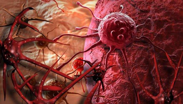 Ученые нашли способ борьбы с «бессмертными» раковыми клетками