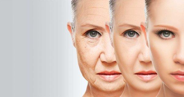 Медики из США в два раза увеличат длительность жизни человека