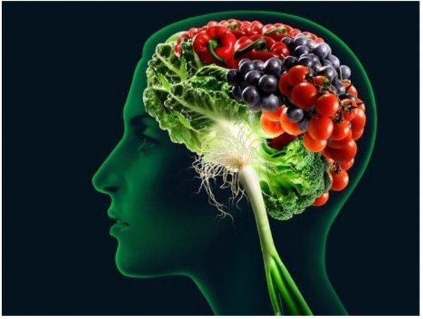 Лесные ягоды способны повысить IQ - Ученые