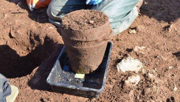 В Британии нашли 4 000-летние кремированные человеческие останки в древней урне