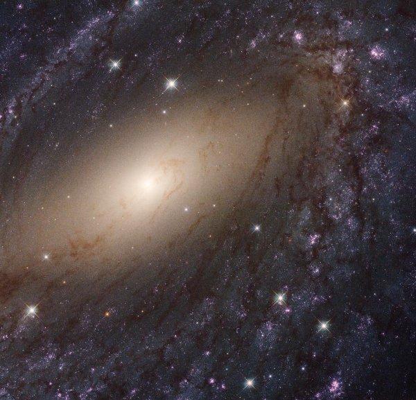 Учёные обнаружили во Вселенной 39 миллионов звёзд, которые в 5 раз тяжелее Солнца