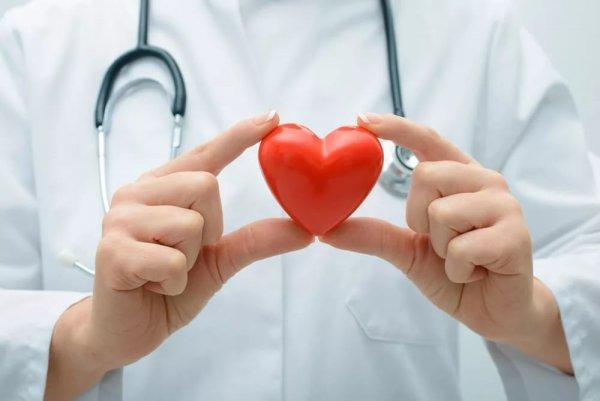 Алгоритм получения донорского сердца изменится из-за открытия ученых