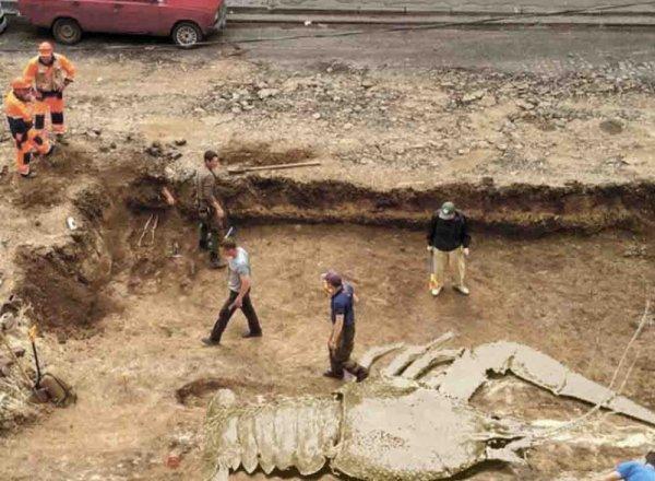 В Ростове при раскопках нашли гигантского окаменелого рака