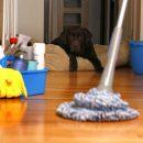 Ученые рассказали о смертельной опасности чистоты в доме