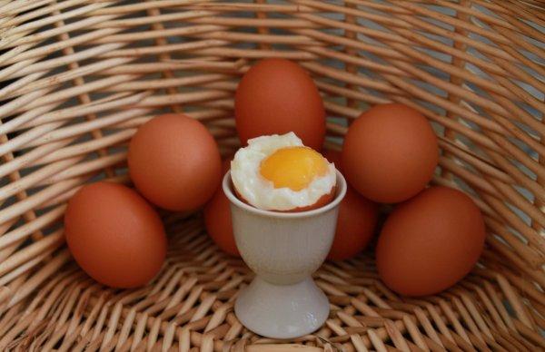 Эксперты: Одно яйцо в день защитит от болезней сердца
