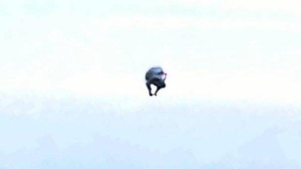 В Новой Зеландии уфологи обнаружили НЛО особо странной формы