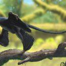 Ирландские палеонтологи: у динозавров была перхоть