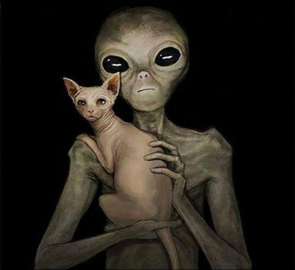 Ученые: Люди истребят инопланетян