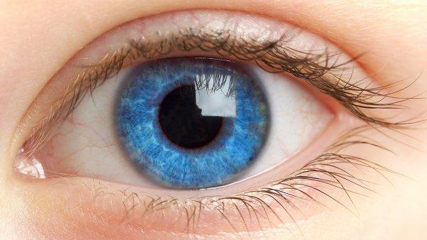 Ученые напечатали на 3D-принтере первую роговицу человеческого глаза