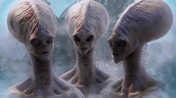 Причина в интеллекте: Уфологи выяснили, почему люди никогда не встретятся с пришельцами
