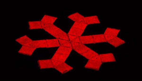 3D-принтер научили печатать шестоногих роботов, управляемых с помощью магнитного поля