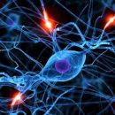 Ученые: Вспышки света – это медитация для нервной системы