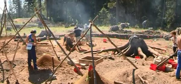 Во время строительства трассы «Сортавала» археологи обнаружили находку эпохи неолита
