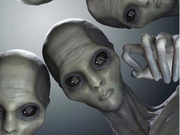 Уфологи: Леонардо да Винчи имел связь с инопланетянами