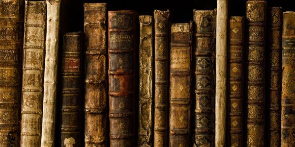 В Дании сотрудники библиотеки обнаружили ядовитые книги XVI и XVII века