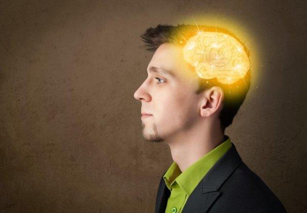 Ученые рассказали, как омолодить мозг