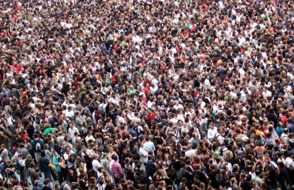 Ученые выяснили, что большинство людей считают себя умнее остальных