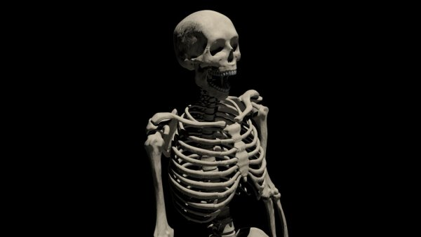 На Украине обнаружили женский скелет с мистическими черными метками