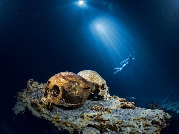 В районе Фанагории археологи нашли человеческий череп возрастом 2 тыс лет