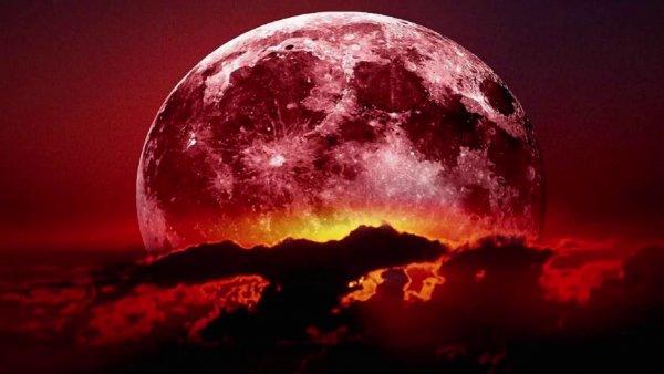 «Кровавая Луна»: Астрологи назвали точную дату следующего полного лунного затмения