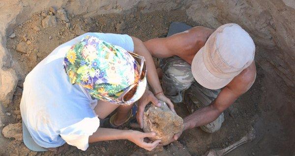 Идеально сохранившуюся древнюю пряжку нашли на озере Уелги
