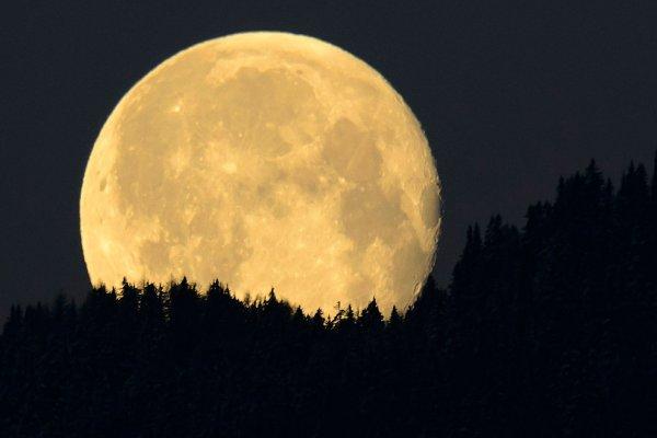 Астрономы рассказали о важности Луны для существования Земли